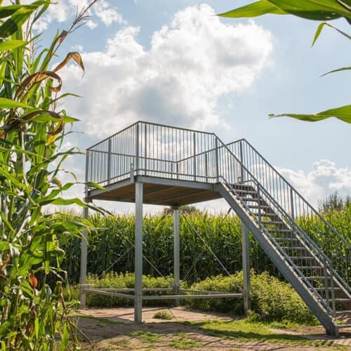 Groot-Twentsch-Maisdoolhof-Fleringen-uitkijktoren