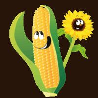iconen-twentsch-groot-maisdoolhof-bloemenpluktuin2
