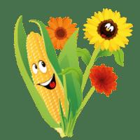 iconen-twentsch-groot-maisdoolhof-bloemenpluktuin3