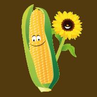iconen-twentsch-groot-maisdoolhof-bloemenpluktuin6