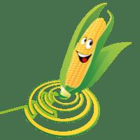 iconen-twentsch-groot-maisdoolhof-bloemenpluktuin7