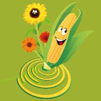 iconen-twentsch-groot-maisdoolhof-bloemenpluktuin9